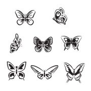 8-Butterflies-Wall-Vinyl-Sticker-Decal-Livingroom-Nursery-Children-Mural-Art-262064318625-2